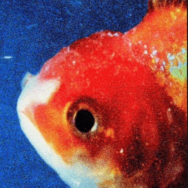 "Album Stream: Vince Staples – ""Big Fish Theory"""