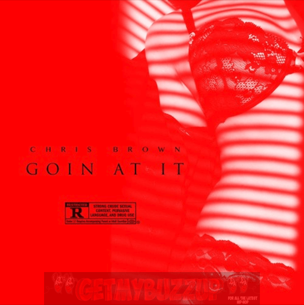 Chris Brown – Goin At It [Audio]