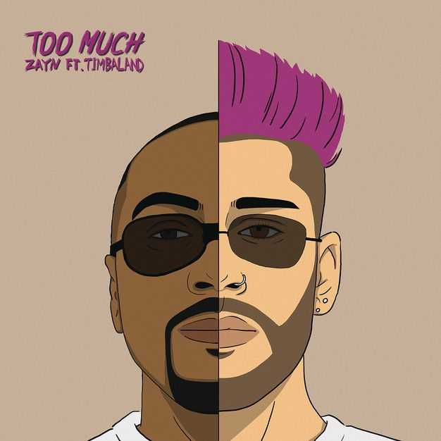 New Single: ZAYN | Too Much (feat. Timbaland) [Audio]