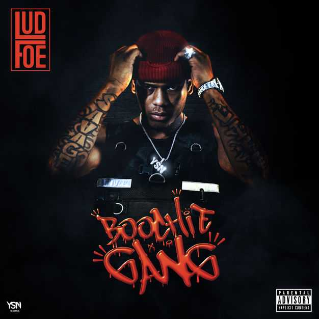 New Project: Lud Foe | Boochie Gang [Audio]