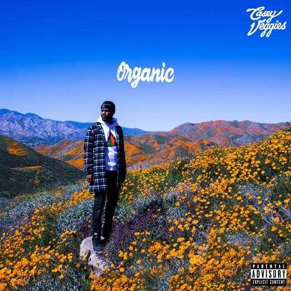 New Project: Casey Veggies – Organic [Audio]