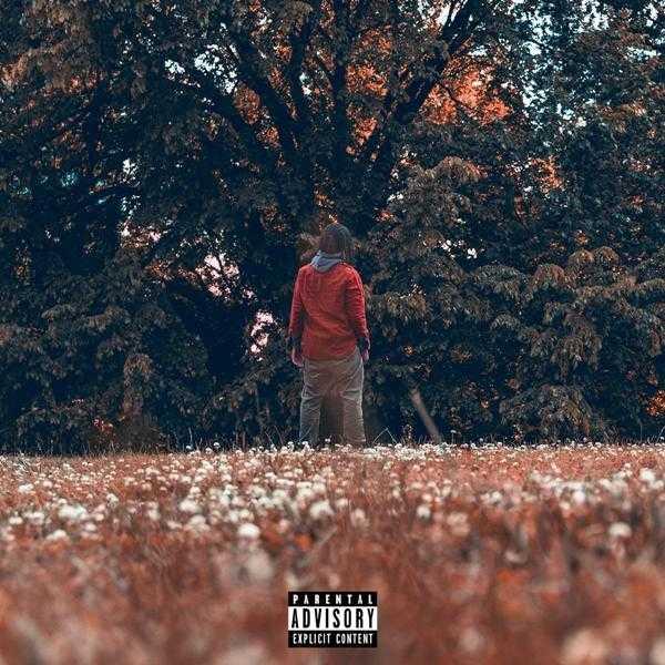 Album Stream: Domani – Time Will Tell [Audio]