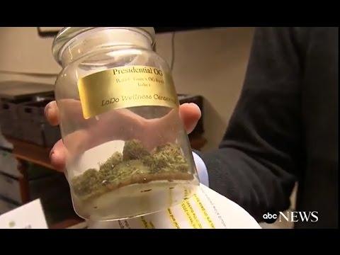 Marijuana Legalization on the Ballot #Election2016 [News]