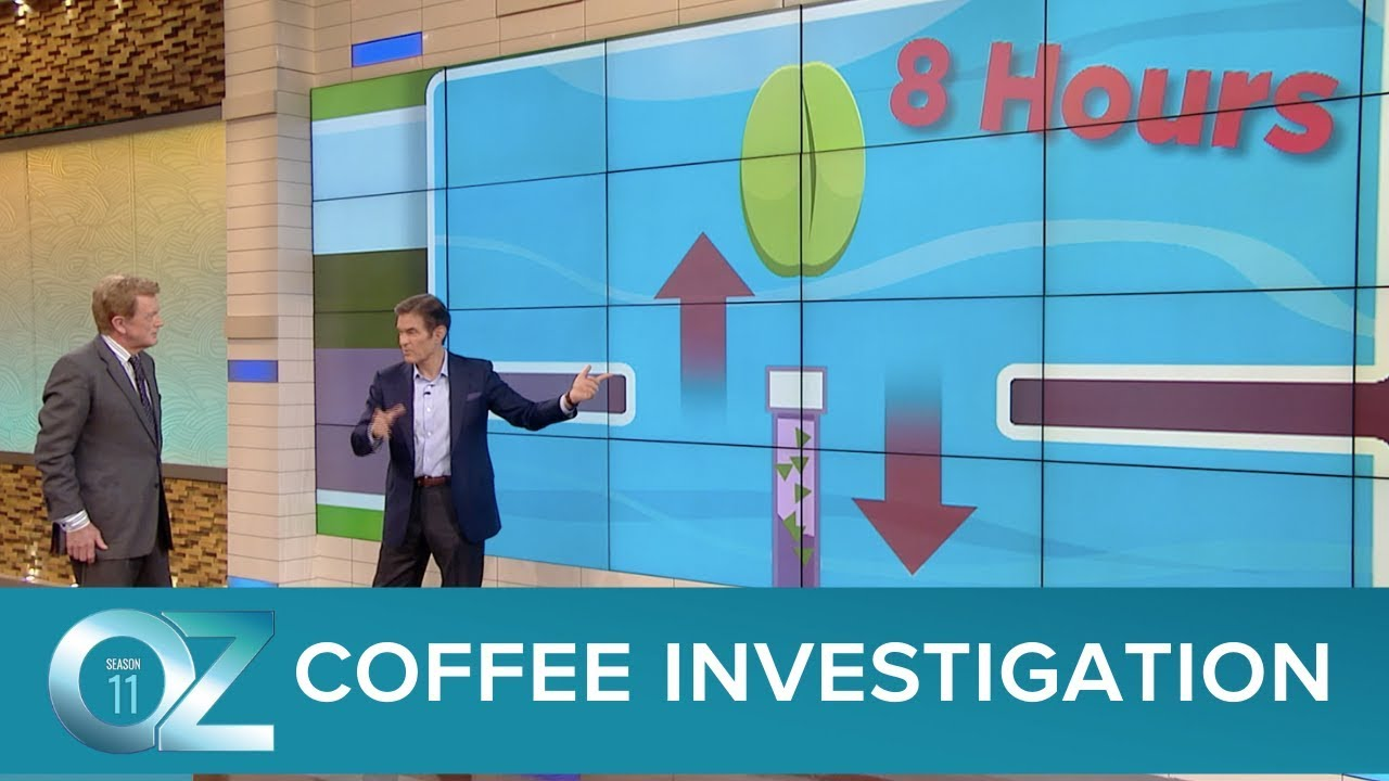 The Big Coffee Investigation You Won't Believe What We Found