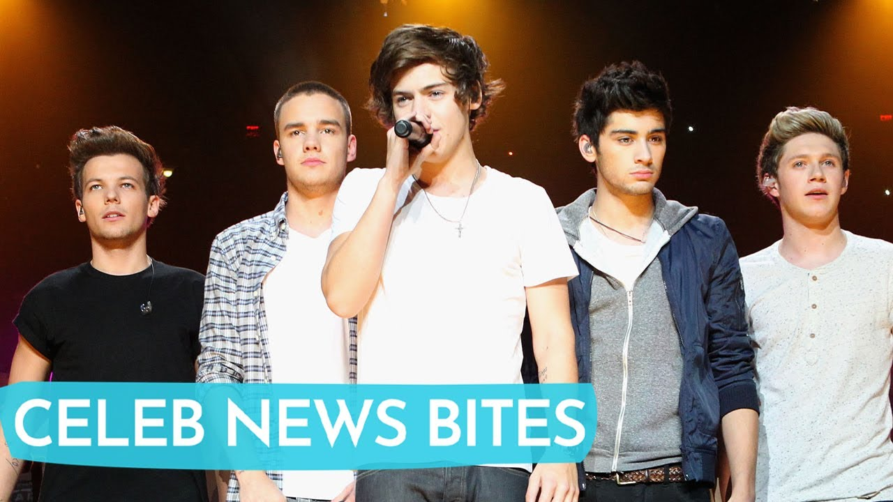 Zayn Malik Disappoints One Direction Fans on 10th Anniversary