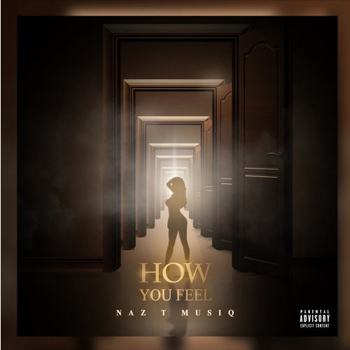 Naz T Musiq - How You Feel