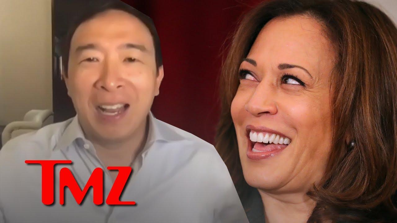 Andrew Yang Bonded with 'Warm, Friendly' Sen. Kamala Harris Early in Campaign | TMZ
