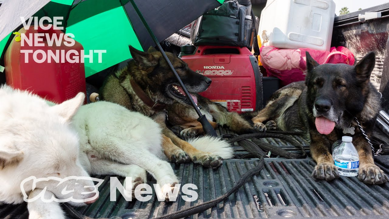 Meet the Family Rescuing Animals Left Behind from Oregon's Wildfires