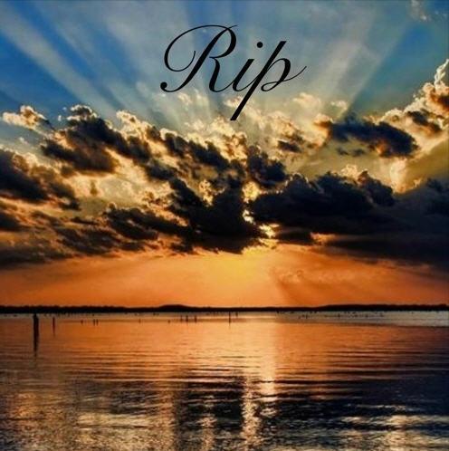Dricks805 - R.I.P (Rest In Paradise) [Audio]
