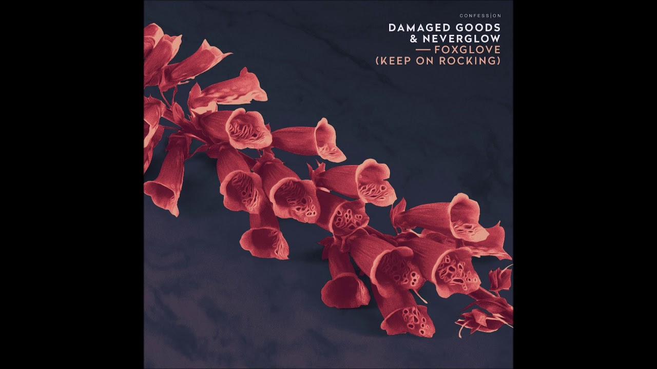 "Damaged Goods & NEVERGLOW – ""Foxglove (Keep On Rocking)"" OFFICIAL VERSION"