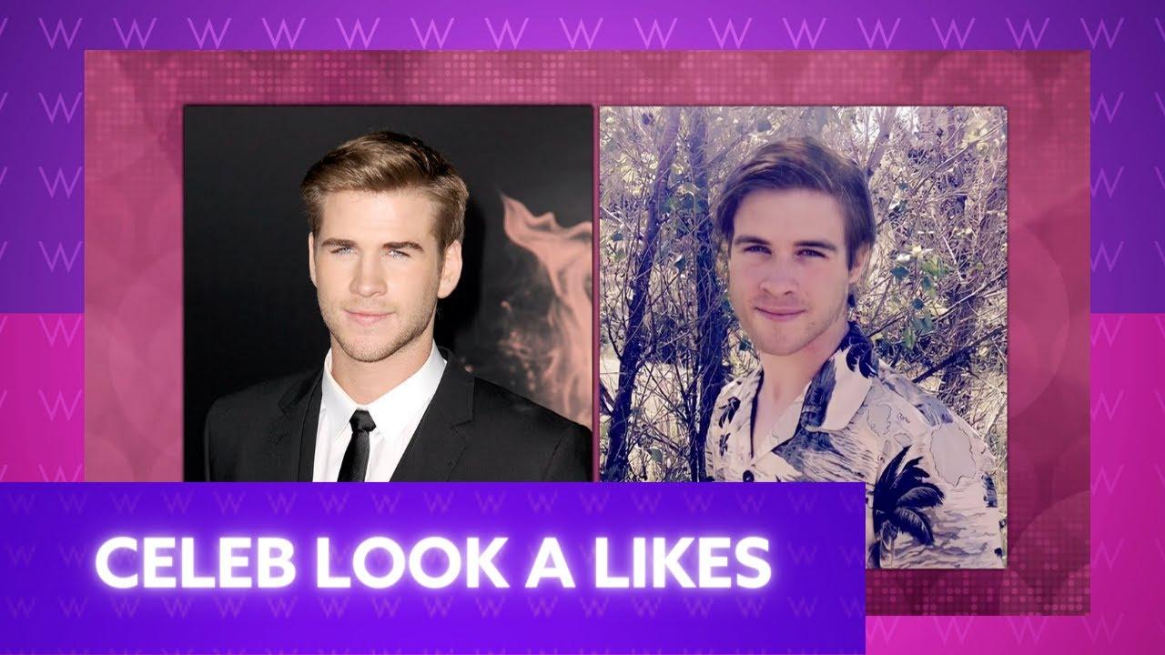 Do You Look Like a Celebrity?