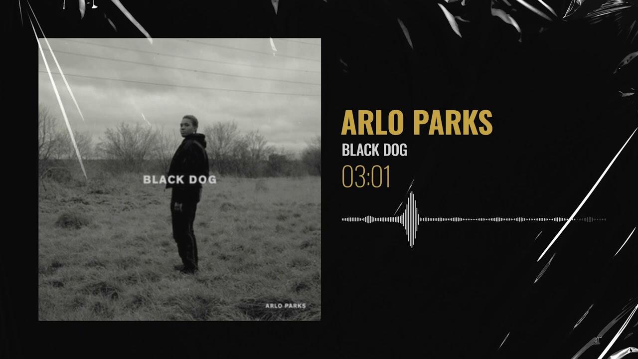 Arlo Parks – Black Dog | Put Me On