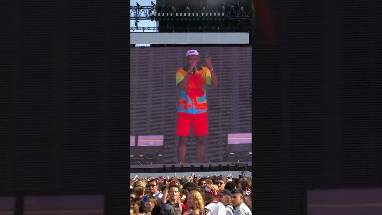 Tyler The Creator Calling Out The Crowd Is Priceless
