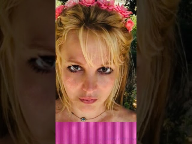 Defending Britney Spears' Father! | Perez HIlton
